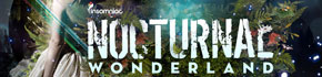 Nocturnal Wonderland Festival